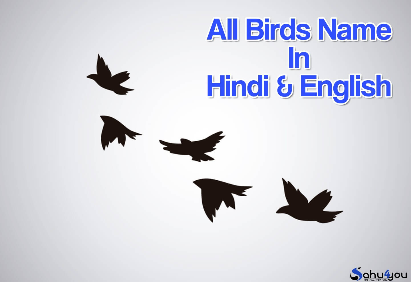 Birds Name In Hindi And English पक ष य क न म