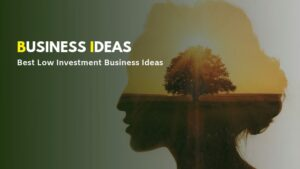 Low Investment Business Ideas (Hindi)