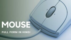 Mouse Meaning in Hindi