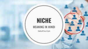 Niche Meaning