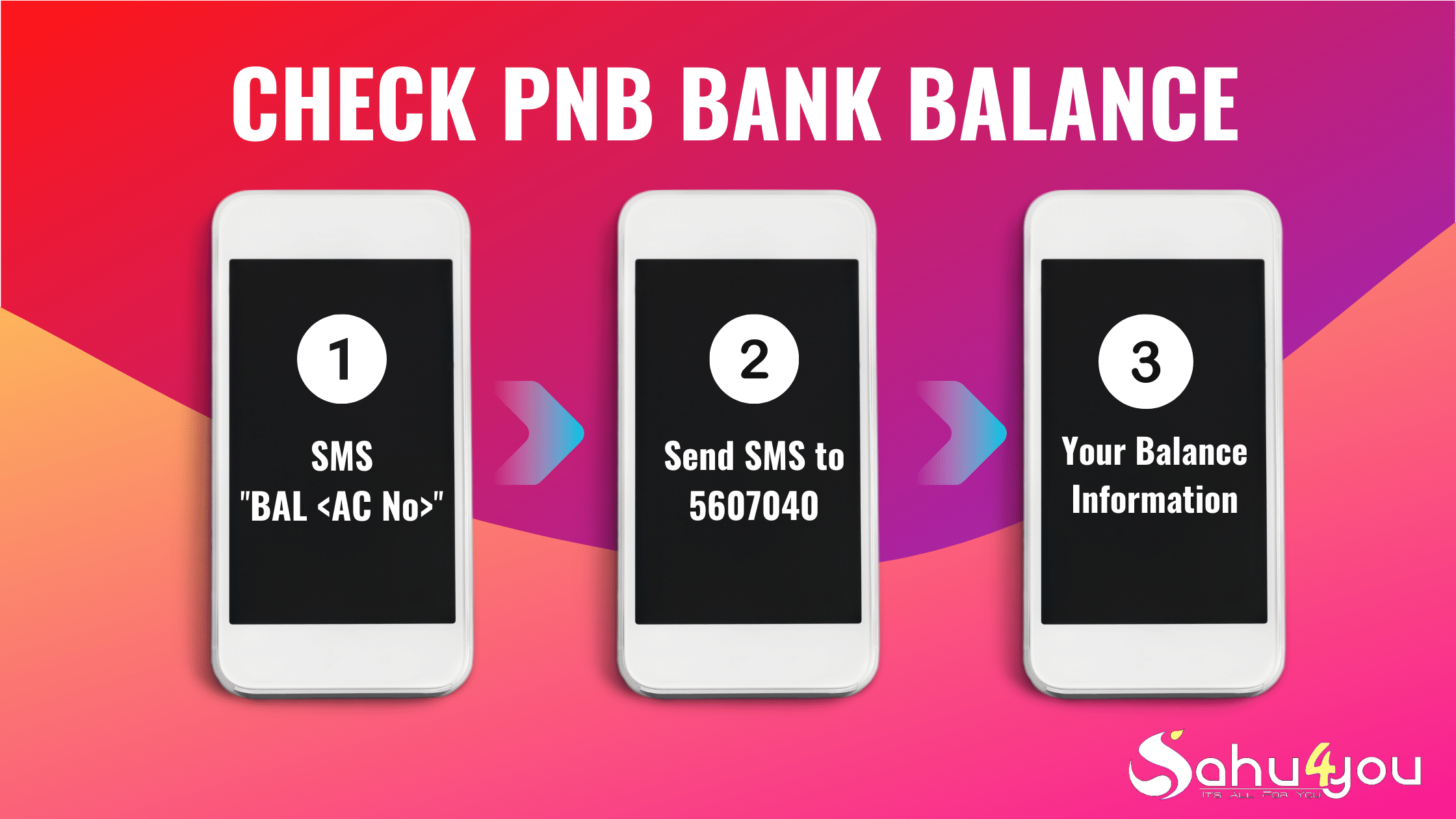 PNB Bank Account Balance Check